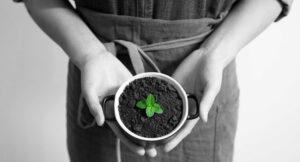 marketing ekologiczny