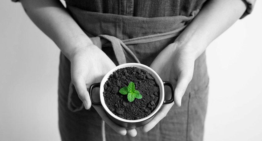 Marketing ekologiczny wyzwania stawiane firmom